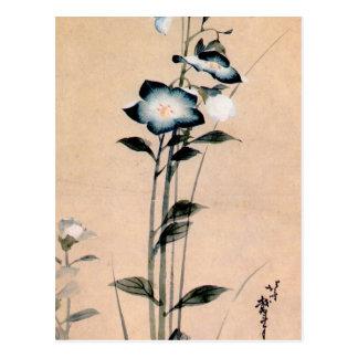桔梗, campanule chinoise de 北斎, Hokusai Ukiyo-e Cartes Postales