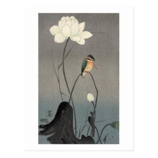 蓮にカワセミ, martin-pêcheur de 古邨 sur Lotus, Koson, Carte Postale