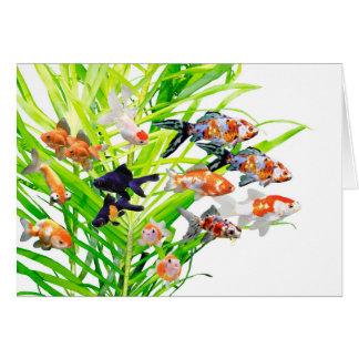 金魚の優良製品 グリーティングカード