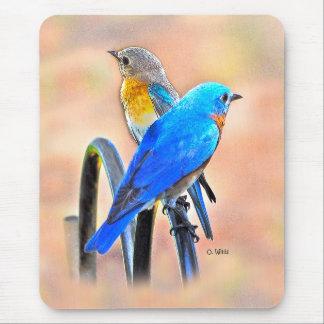 010 tapis de souris de l'amour 7.75x9.25 d'oiseau