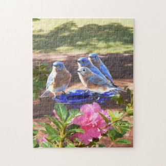 050 d'oiseaux bleus puzzle pour toujours 11x14 252