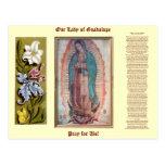 12 décembre   notre Madame de Guadalupe Cartes Postales