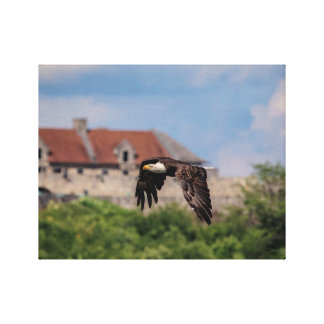 14x11 Eagle chauve passant le fort Ticonderoga Toile