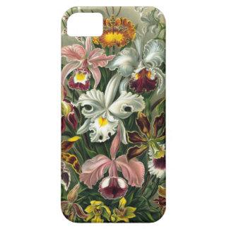 1904 formes d'art d'orchidées de copie de nature coque Case-Mate iPhone 5