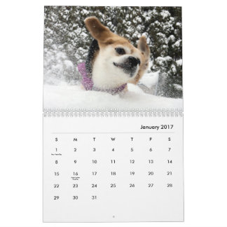 2017 ! CALENDRIERS