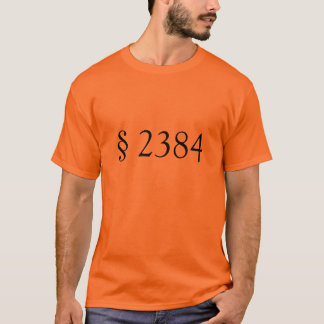 § 2384 de 18 USC - conspiration séditieuse T-shirt