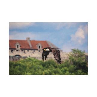 24x16 Eagle chauve passant le fort Ticonderoga Toile