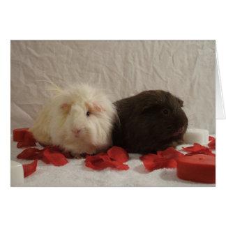 2 Valentines de cobaye Cartes