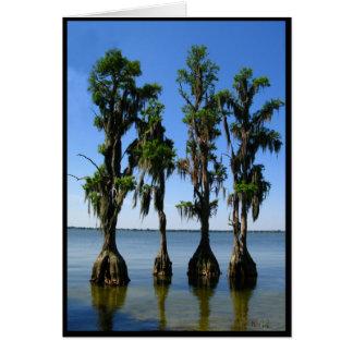 4 arbres carte de vœux