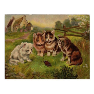 4 chats jouant avec la carte postale 1900's