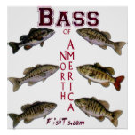 5Ft.Bass d'affiche de l'Amérique du Nord