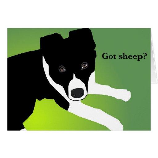 """""""A obtenu des moutons ?"""" Cartes"""