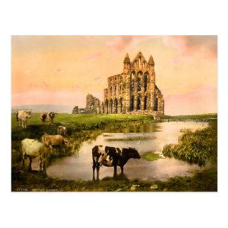 Abbaye vintage Yorkshire Angleterre de Whitby Carte Postale
