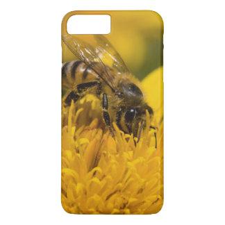 Abeille africaine de miel avec l'alimentation de coque iPhone 7 plus