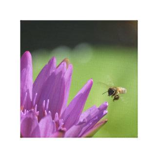 Abeille de miel de vol toiles