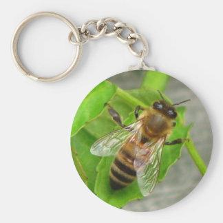 Abeille de miel porte-clé rond