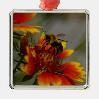 Abeille forageant sur une fleur ornement carré argenté