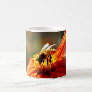 Abeille indigène dans une tasse orange de fleur