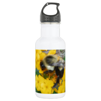 abeille jaune et noire sur la fleur jaune