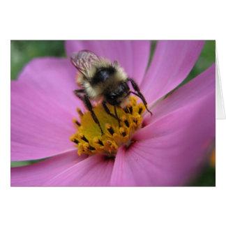 Abeille sur la carte de note de fleur