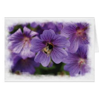 Abeille sur la carte de voeux de blanc de fleur
