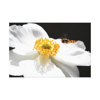 Abeille sur la fleur toile tendue