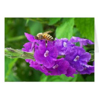 Abeille sur les fleurs pourpres pourpres carte de vœux