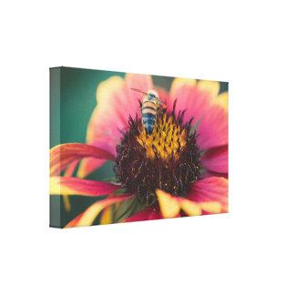 Abeille sur une fleur toiles