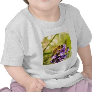 Abeille T-shirts
