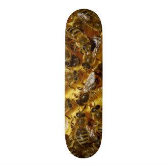Abeilles de miel dans la ruche avec la reine au mi planche à roulette