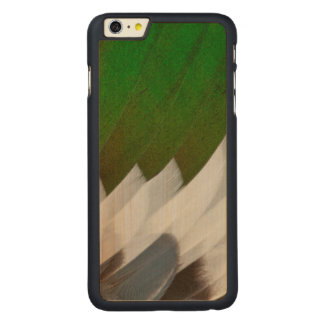 Abrégé sur coloré plume de canard coque en érable iPhone 6 plus