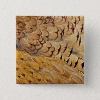 Abrégé sur plume de faisan de Brown Badge