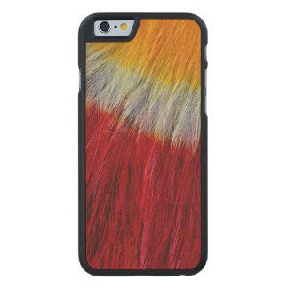 Abrégé sur rouge plume de toucan de Breasted Coque Mince En Érable iPhone 6
