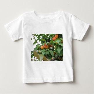Abricots mûrs accrochant sur l'arbre. La Toscane, T-shirt Pour Bébé