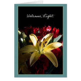 Accueil, lumière cartes