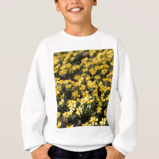 Aconit napel d'hiver (hyemalis d'Eranthis) Sweatshirt