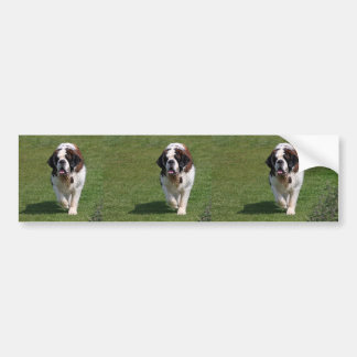 Adhésif pour pare-chocs de photo de chien de St Be Autocollant Pour Voiture