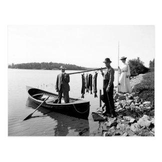 Adirondack 1903 Mts. Carte postale