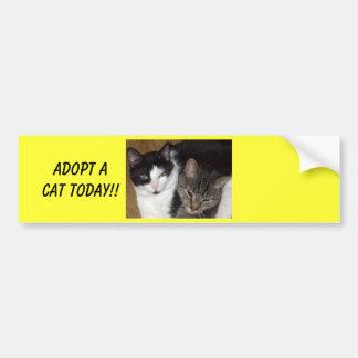Adoptez un adhésif pour pare-chocs de chat autocollant pour voiture