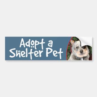 Adoptez un chien australien de bétail d'animal autocollant de voiture