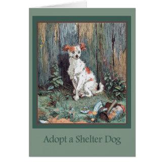 Adoptez une carte de chien d'abri