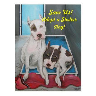 Adoptez une carte postale de chien d'abri