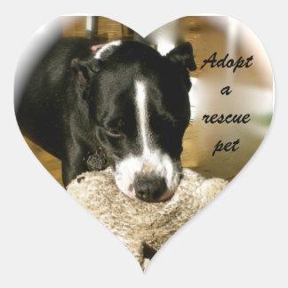 Adoption d'animal familier de délivrance sticker cœur