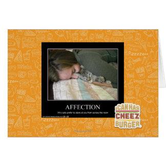 Affection Cartes