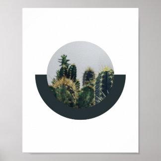 Affiche abstraite 2 % pipe% 8x10 de cactus poster