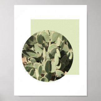 Affiche abstraite | 8x10 de cactus poster