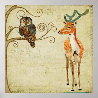 Affiche ambre d'art de mâle et de hibou de Teal
