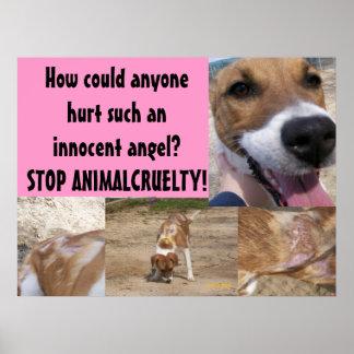 Affiche animale de cruauté