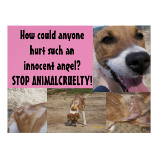 Affiche animale de cruauté posters