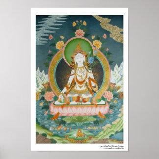 Affiche blanche Tara
